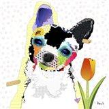 Chihuahua III Art Print