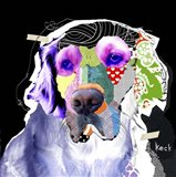 Golden Retriever III Art Print