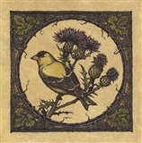 Apple Grossbeak Bird Art Print