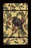 Apple Raven Art Print