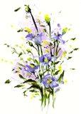 Purple Blooming Art Print