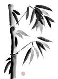 Bamboo 5 Art Print