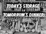 Today's Storage, Tomorrow's Dinner Art Print