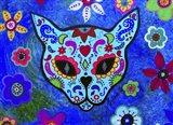 El Gato Face Meow Art Print