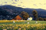 Return Of The Snowgeese Art Print