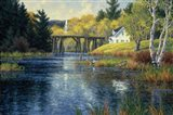 Old Trestle Pond Art Print
