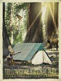 Redwood Camping Art Print