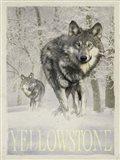 Wolf Snow Art Print