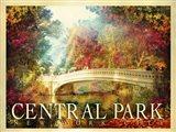 Central Park 2 Art Print