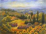 Tuscan Countryside Art Print