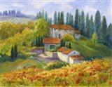 Tuscan Sunlight Art Print