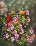 Cardinals with Roses Art Print
