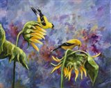 Finches with Sunflowers Art Print