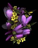 Tulip Magnolia & Jasmine Art Print