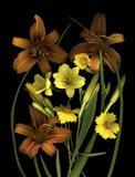 Lilies & Coreopsis Art Print