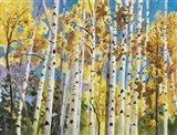 Aspen In Blue Sky Art Print
