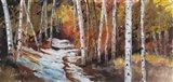Aspen in Snow Path Art Print