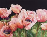 Breckenridge Poppies Art Print