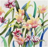 Mixed Tulips Delight Art Print