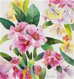 Rhodes Delight Art Print