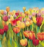Tulips in Blue Sky Art Print