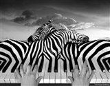 Piano Peace Art Print