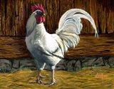 Bantam Rooster Art Print