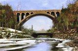 Bridge 1 Art Print