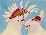 Major Mitchell's Cockatoos Art Print