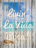 Livin La Vida Boca Art Print