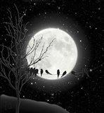 Moon Bath I Art Print