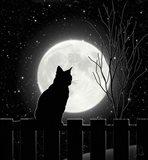 Moon Bath II Art Print