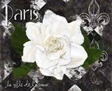 Paris La Vill De L'amour Art Print