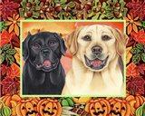 Autumn Border Art Print
