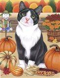 Harvest Cat Art Print