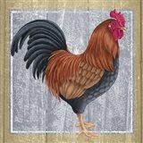 Chicken 1 Art Print