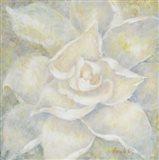 E-Motion Gardenia Art Print