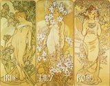 Iris Lily Rose Art Print