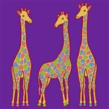3 Giraffes Art Print