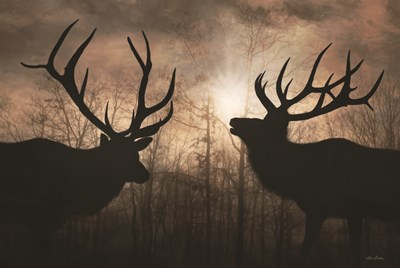 Elk Sunrise III Art Print by Deiter