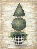 Gingham Topiary Cone Art Print