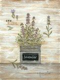 Lavender Botanical Art Print