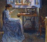The Seamstress's Novel Art Print