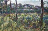 Lombardy Countryside Art Print