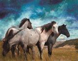 Starry Night Horse Herd Art Print