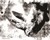 Modern Black & White Rhino Art Print