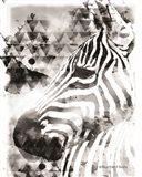 Modern Black & White Zebra Art Print