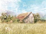 Spring Green Meadow by the Old Barn Art Print