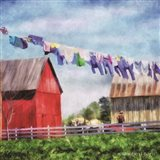 Clothesline Farm Art Print