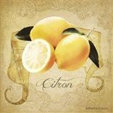 Vintage Lemons Citron Art Print